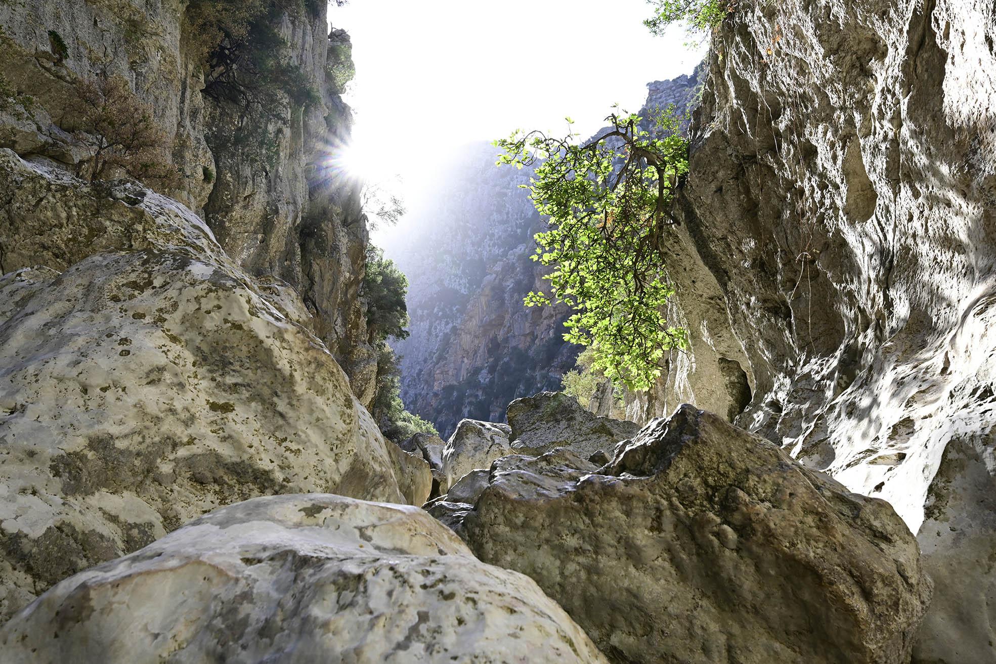 Schluchtenwanderung Torrente de Pareis